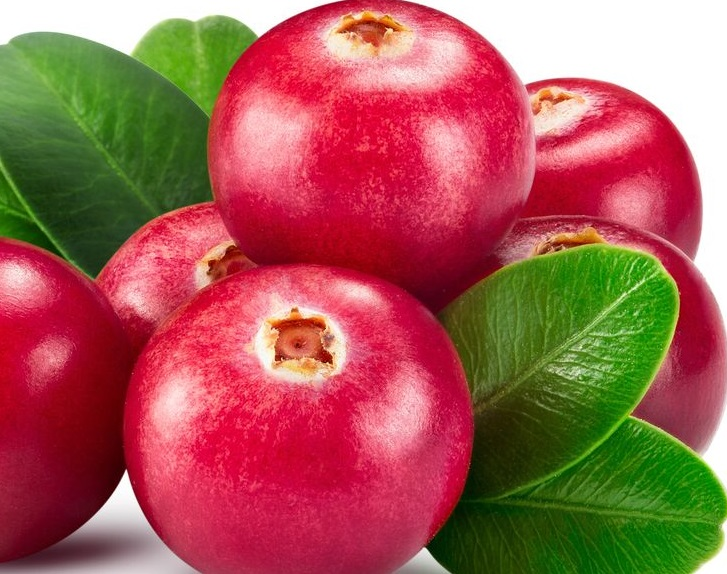 Are Cranberries Weight Loss Food?